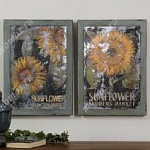 Картина Sunflower Farmers Market, Uttermost